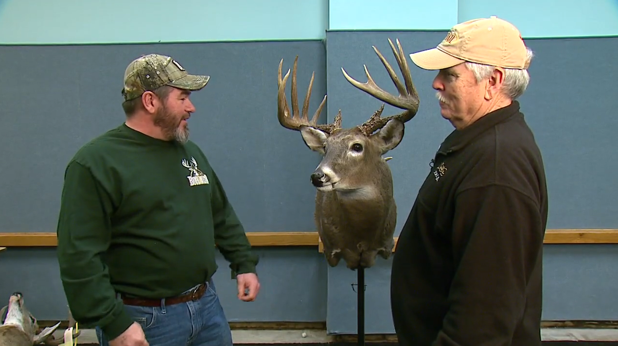 Big Buck Profile: Shelby, IL 7x7 Typical