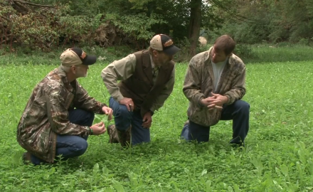 Dr. James Kroll takes a look at a Hillsboro, Illinois landowner's deer property and offers his
