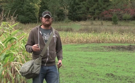 Jeremy Moore covers the topic of developing a pack mentality in your deer dog.