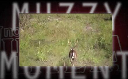 A Georgia buck is captured on video, and he may just have the biggest 4 point rack ever caught on tape.