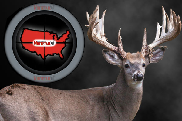 20 Best Whitetail States for 2014