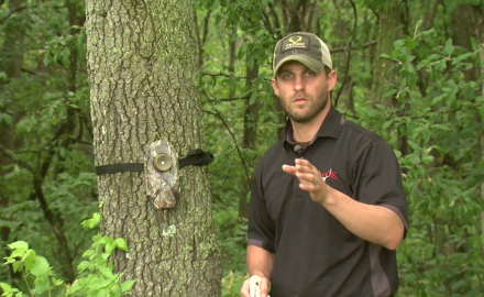 Pat Hogan offers four main tips on how to get the best photos from your trail camera.