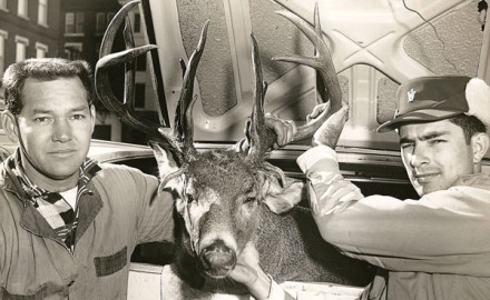 Over the last 35 years, whitetail hunters in the Southeast have witnessed a remarkable evolution.