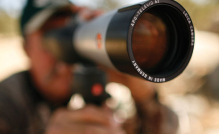 how to use optics when scouting for whitetail