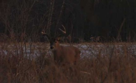 Mike Clerkin pursues trophy whitetails in Illinois with his TenPoint crossbow.