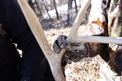 Shed Hunting in Iowa