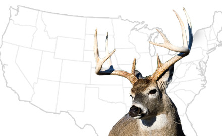 Big-Buck-States-for-2015-vs2
