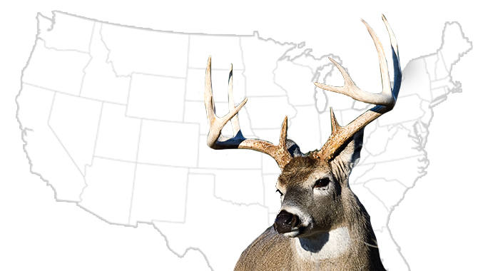 20 Best DIY Whitetail States for 2015
