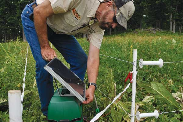 Dr deer how to protect your food plot using electric