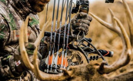 Want to maximize the accuracy of your new arrows? Check out this advice on choosing the right