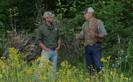 Dr. James Kroll discusses the importance of native forage in your whitetail nutrition strategy.