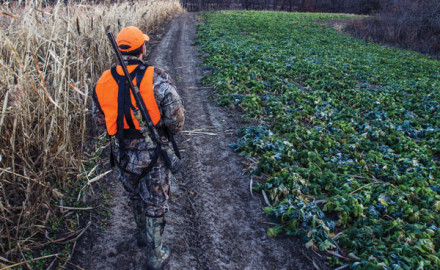 Being able to access hunting spots without spooking deer is a key factor often overlooked. Here, a