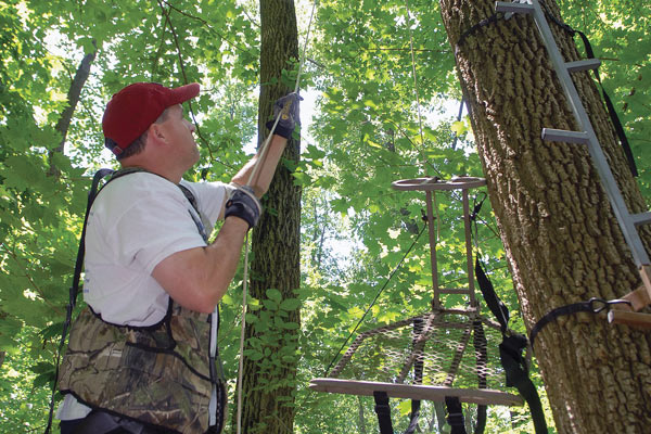 When Should You Hang Your Treestand?