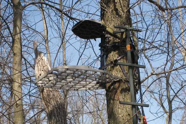 When should you hang your treestand north american for Permanent tree stand