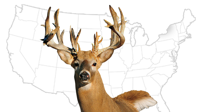20 Best Whitetail States for 2015
