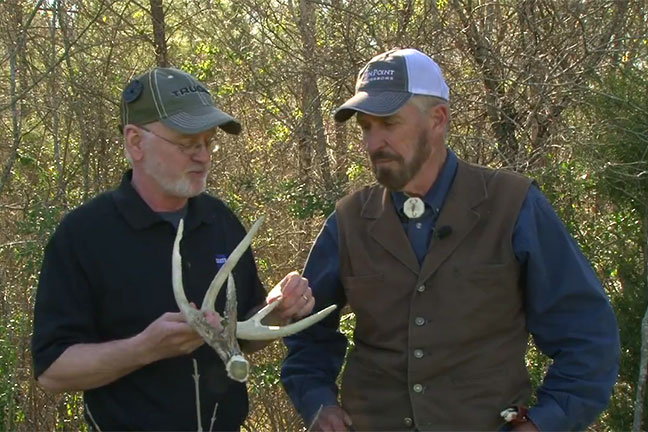 Antler-Casting-Science