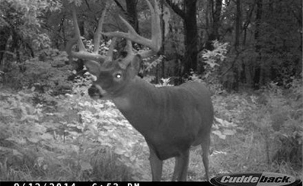 Going into the 2014 season, Rob White had no way of knowing he would shoot the deer of his life,