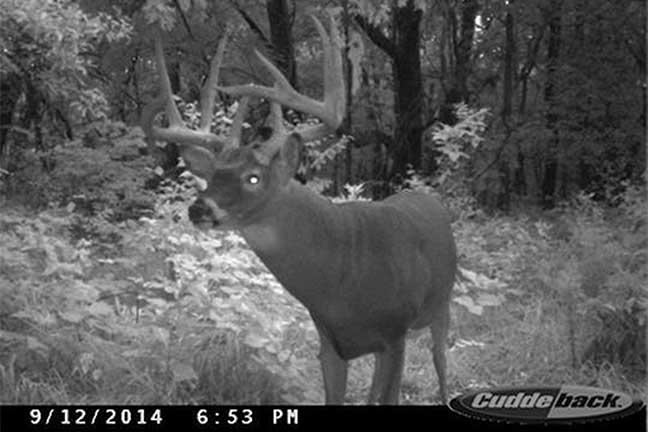 Iowa-booner-buck