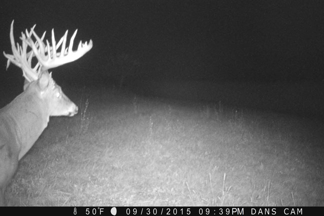 Dan Coffman Buck: 288-Inch Ohio Giant