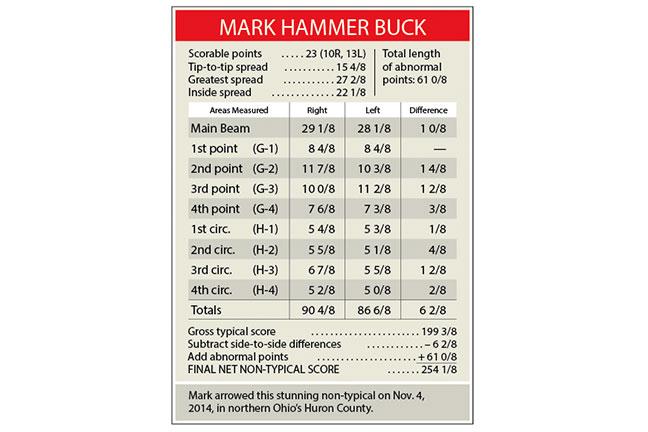 Hammer-buck-score