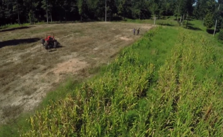 Cool season food plots are some of the most effective to plant for hunting. Why? Simple: