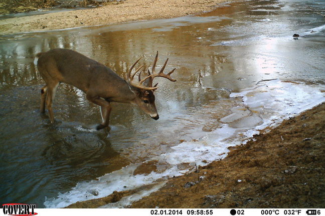 big-bucks-in-illinois