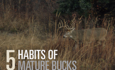 Exploit mature bucks throughout each transitional stage of the rut with these custom-matched