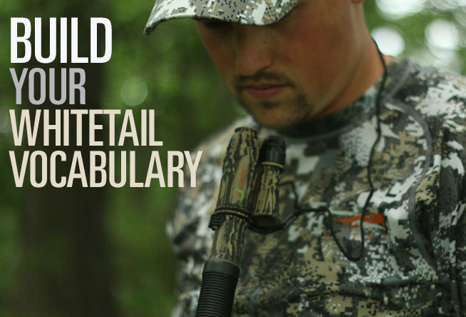 The Bowhunter's Ready for Action Checklist