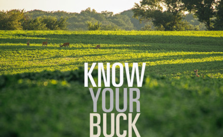 If you want to shoot a buck on opening day, you need to get to know his patterns and tendencies so
