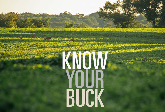 Know Your Buck