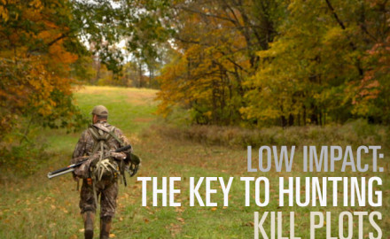 You have to be a low impact hunter to consistently take deer on or around food plots. Kill plots