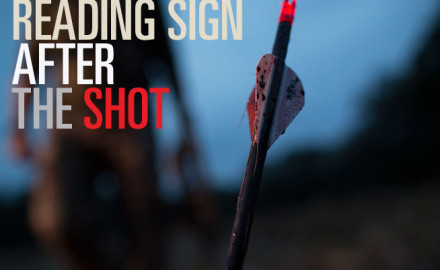 The skill it takes to execute a perfect shot is only a part of being an ethical hunter – blood trailing is just as important