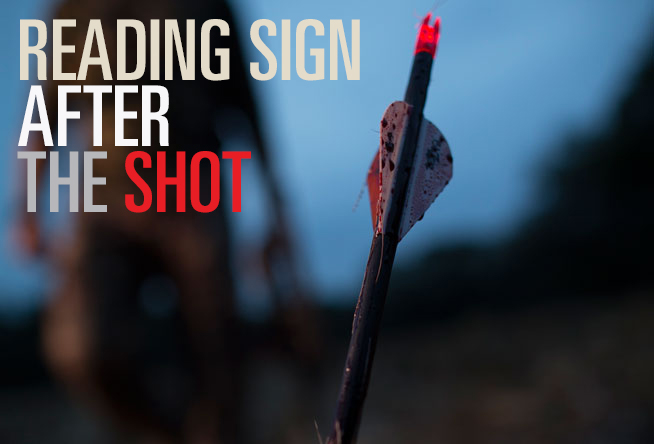 Reading Sign After the Shot