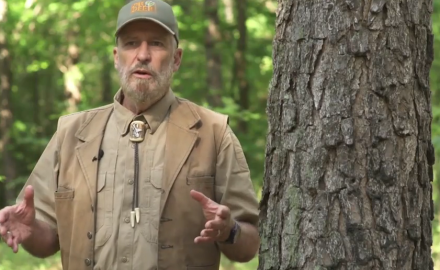 Dr. James Kroll discusses whether you should kill a coyote during a whitetail hunt.