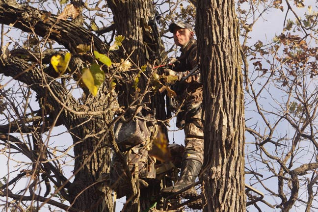 treestand-placement-for-concealment