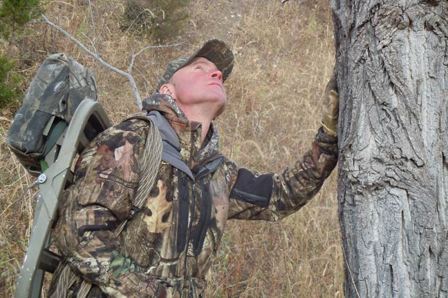 treestand-placement-for-whitetail