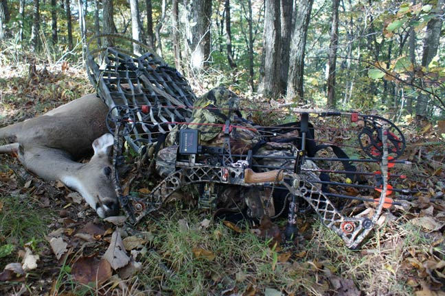 early-season-tips-for-bowhunting