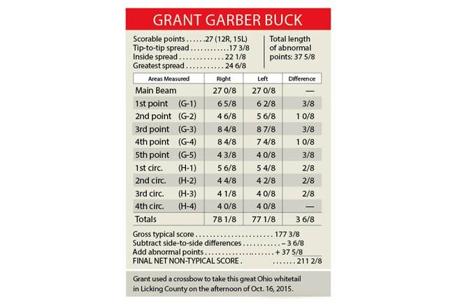 giant-ohio-buck