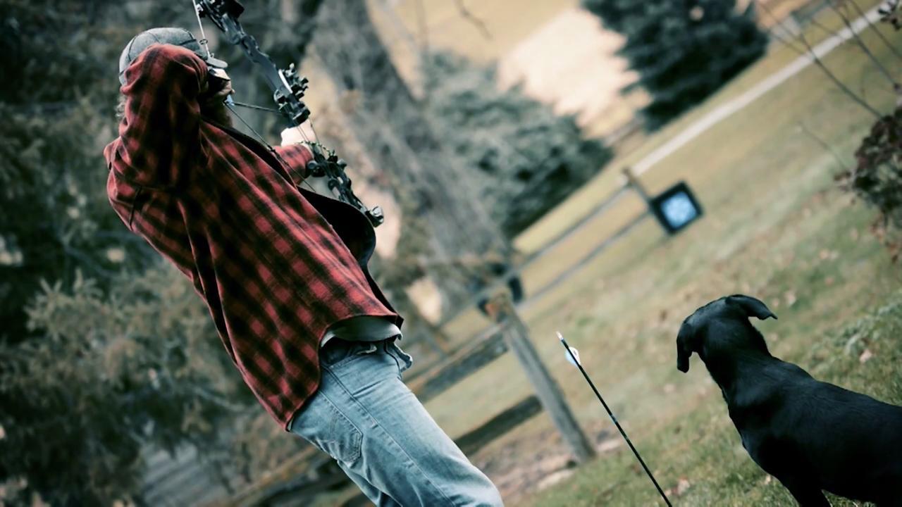 Deer Dog: Steadiness Training