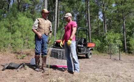 Dr. James Kroll and Pat Hogan discuss how to maximize the mast on your hunting property.