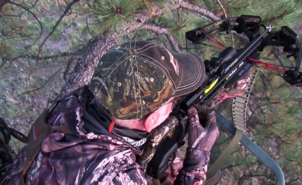 Gordon Whittington talks crossbow strategies when it comes to deciding whether or not to stop a