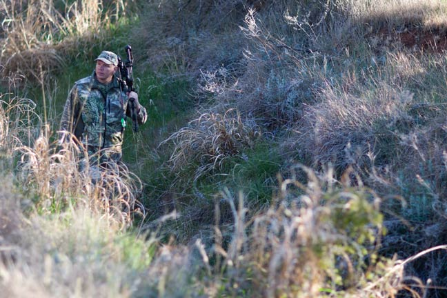 Hunting Bedding Areas  —  Risk Vs. Reward