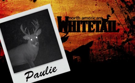 Pat Hogan heads to Houston County, Minnesota in pursuit of pre-rut buck action. He has his sights