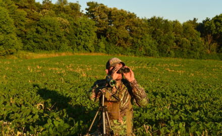 Follow these tips to locate big bucks before fall!