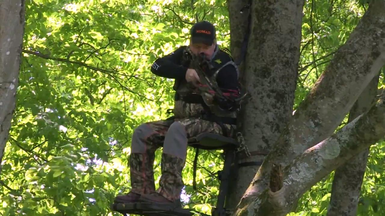 From the Stand: Tree Stand Positioning