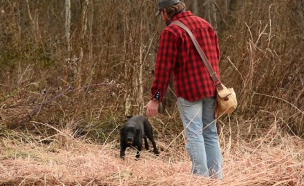 Jeremy Moore talks about the importance of your deer dog's physical conditioning.