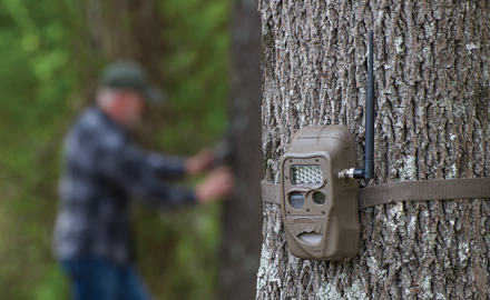 The trail camera world has seen lots of innovation this year, with user-friendly options for wireless cameras. These products are sure to get the job done!