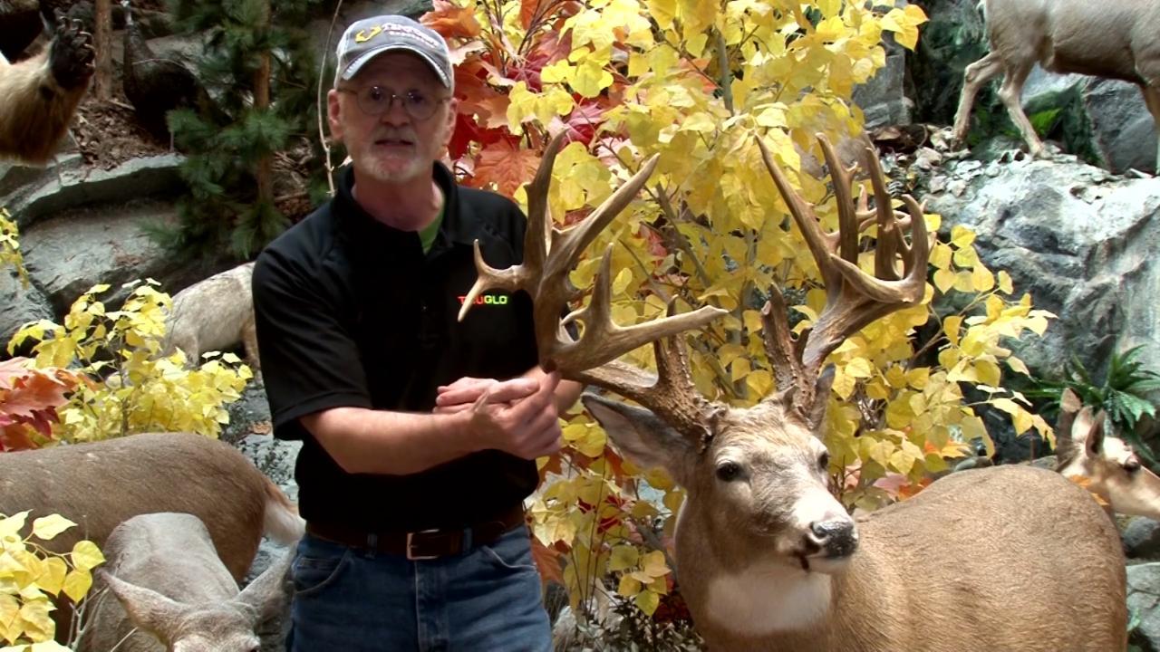 South Dakota Buck