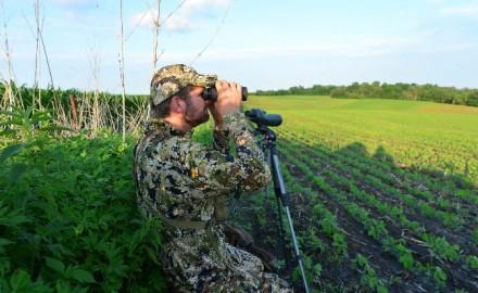 Summer-Deer-Scouting-1