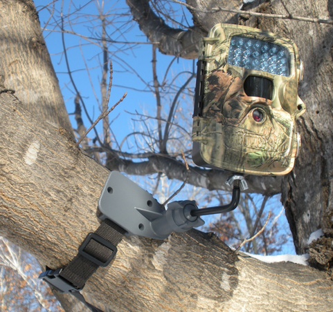 Trail camera mounted high in tree